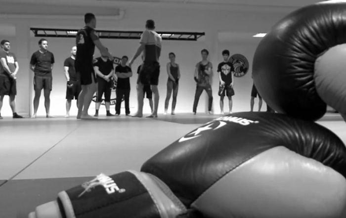 MMA Mixed-Martial-Arts
